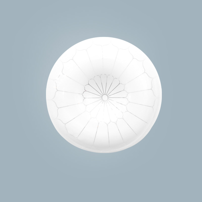 The best maintenance-free cold white ceiling light 16W