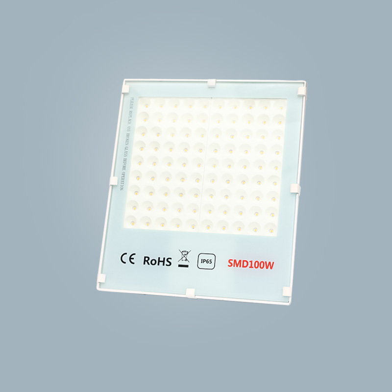 Flood light 100w white