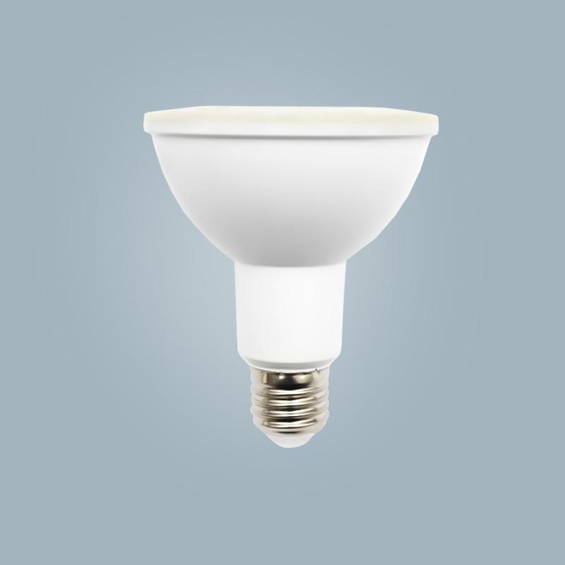 Par light PAR30-12W
